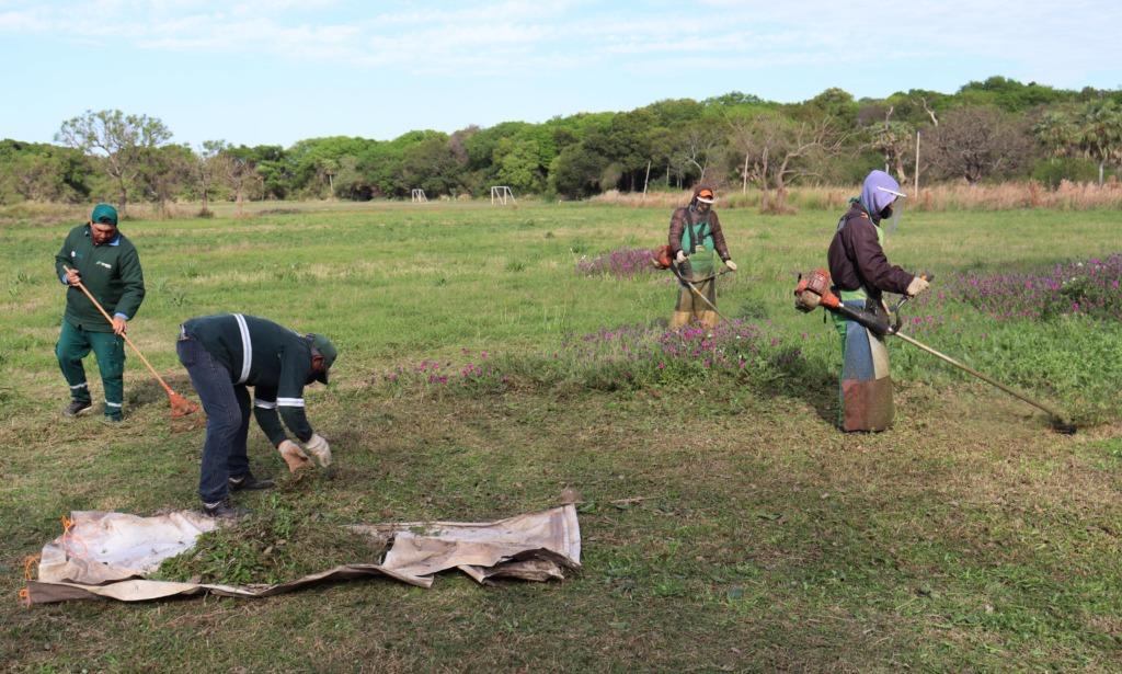 Resistencia realizó tareas de saneamiento en el predio de Chaco Rugby Club